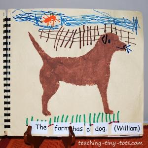 dog on the farm