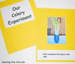 celery experiment book