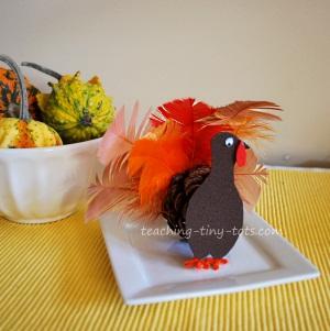 pinceone turkey
