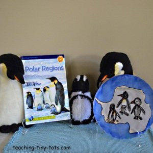 penguin project