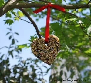 birdseed buiscuit