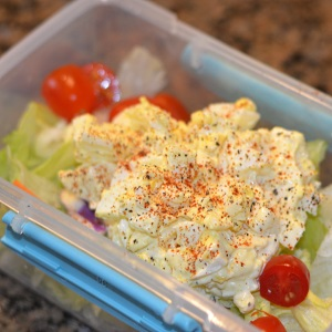 egg salad on a bed of lettuce