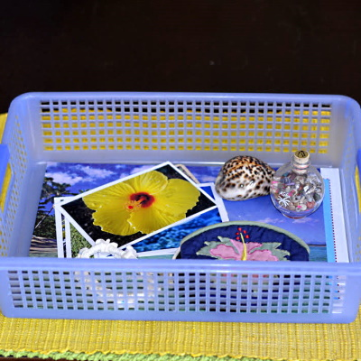 Make a basket with items to represent each state.
