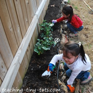 planting with kids