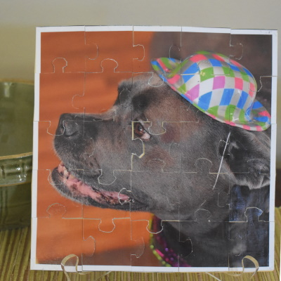 Make a puzzle from pictures and drawings.