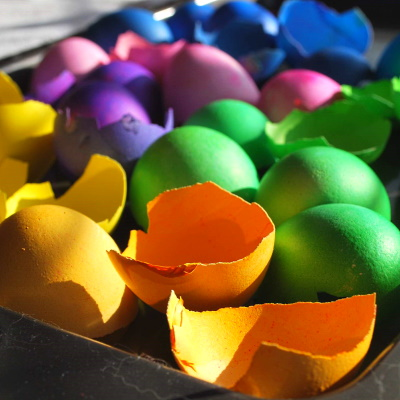 Coloring eggshells to make a mosaic.