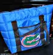 Cooler bag for traveling with kids