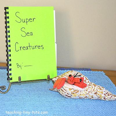 Make a kids ocean book.